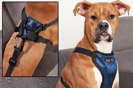 Car Dog Safety Harness
