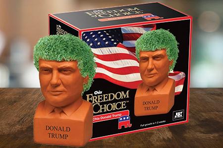 Trump Chia Pet
