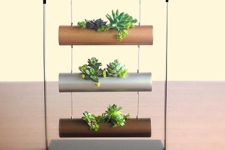 Planting Cylinder Display