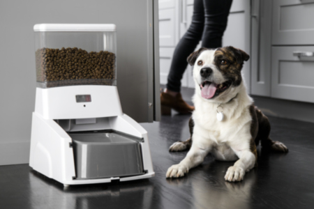 Smart Feeder for Dogs
