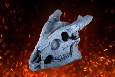 Fire Pit Skull