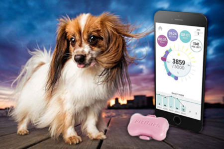 FitBark for Dog Activity Monitor