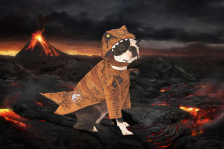 T-Rex Pet Costume
