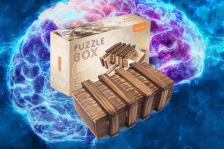 Secret Compartment Puzzle Box