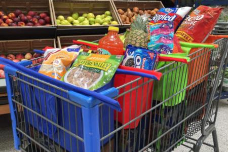 Shopping Cart Organizer