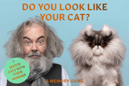 Do You Look Like Your Cat?